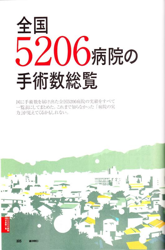 Asahi305