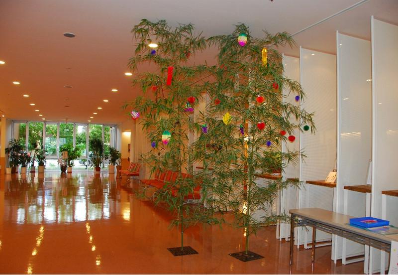 Tanabata_dsc_0013
