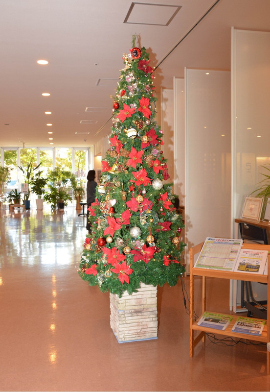 Christmas_tree_2290